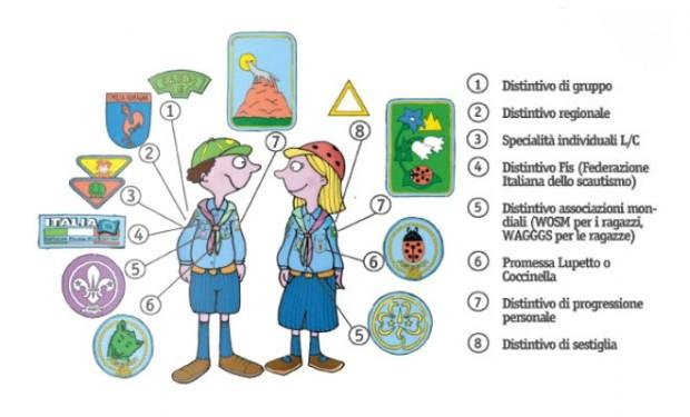 I distintivi del lupetto e della coccinella
